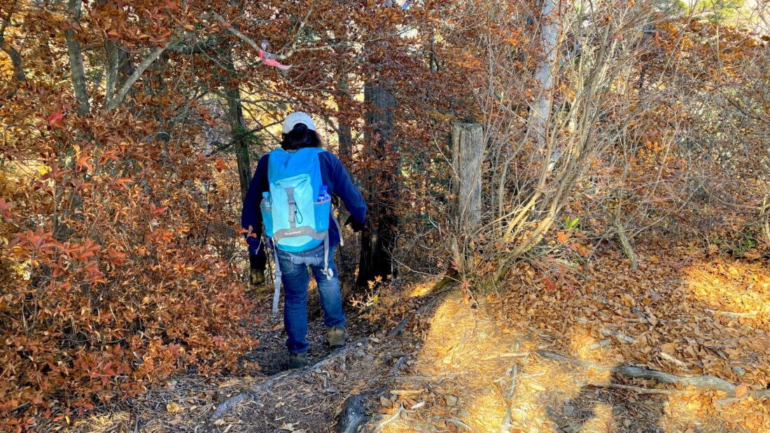 Fall Hiking in Uenomura: Mt. Kasamaru