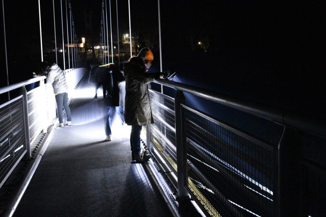 Family Weekend Getaway in Uenomura: Night safari