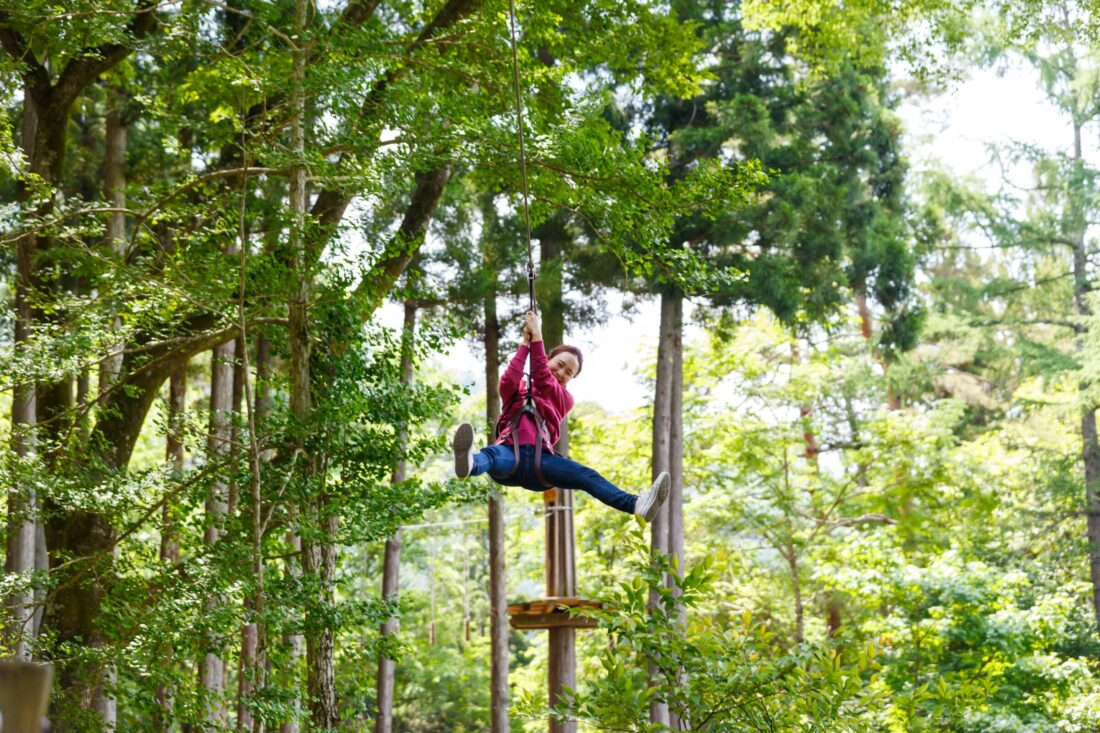 Fun for the Whole Family: Forest Adventure
